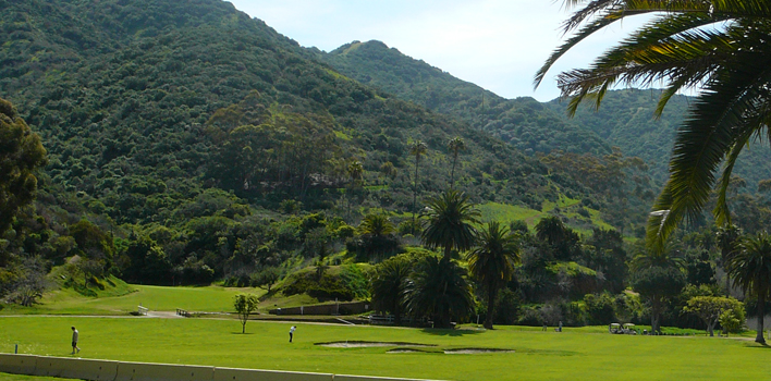 Catalina Golf